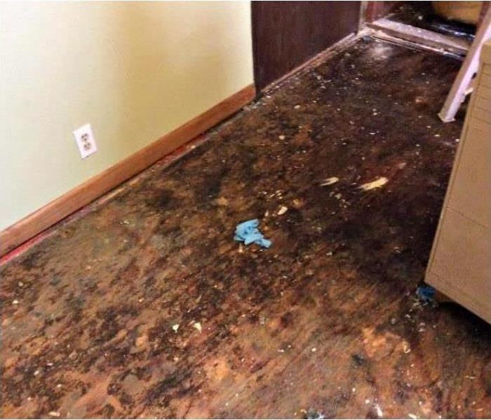 Water Damage Floor in Orlando Before
