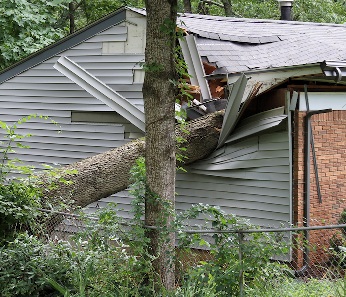 Storm Damage SERVPRO Professionals are the Storm Damage Experts