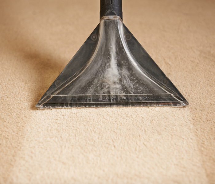 Cleaning Carpet Cleaning Professionals