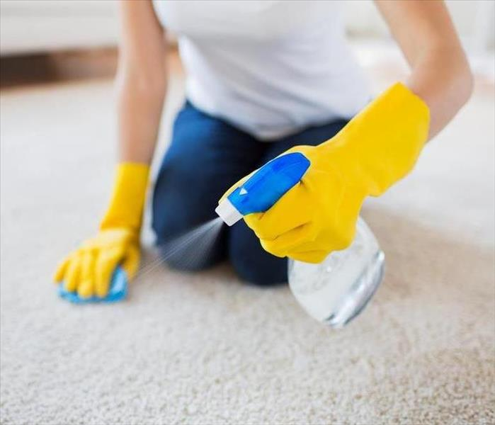 Why SERVPRO How to Remove a Minor Vomit Mess from Your Carpet