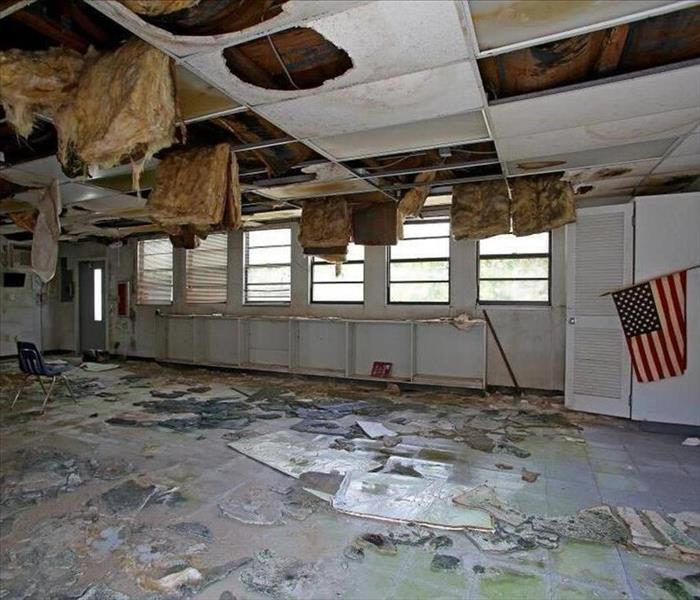 Commercial Mold In Commercial Buildings and Schools