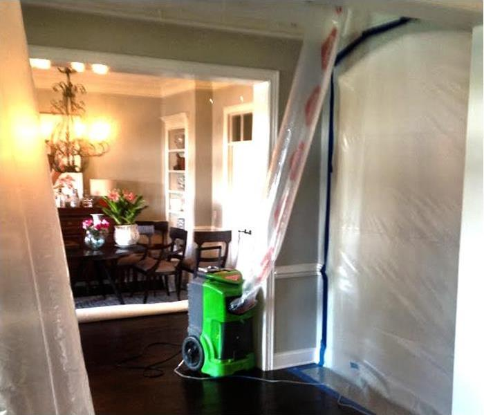 Mold Remediation 5 Steps Used for Mold Remediation